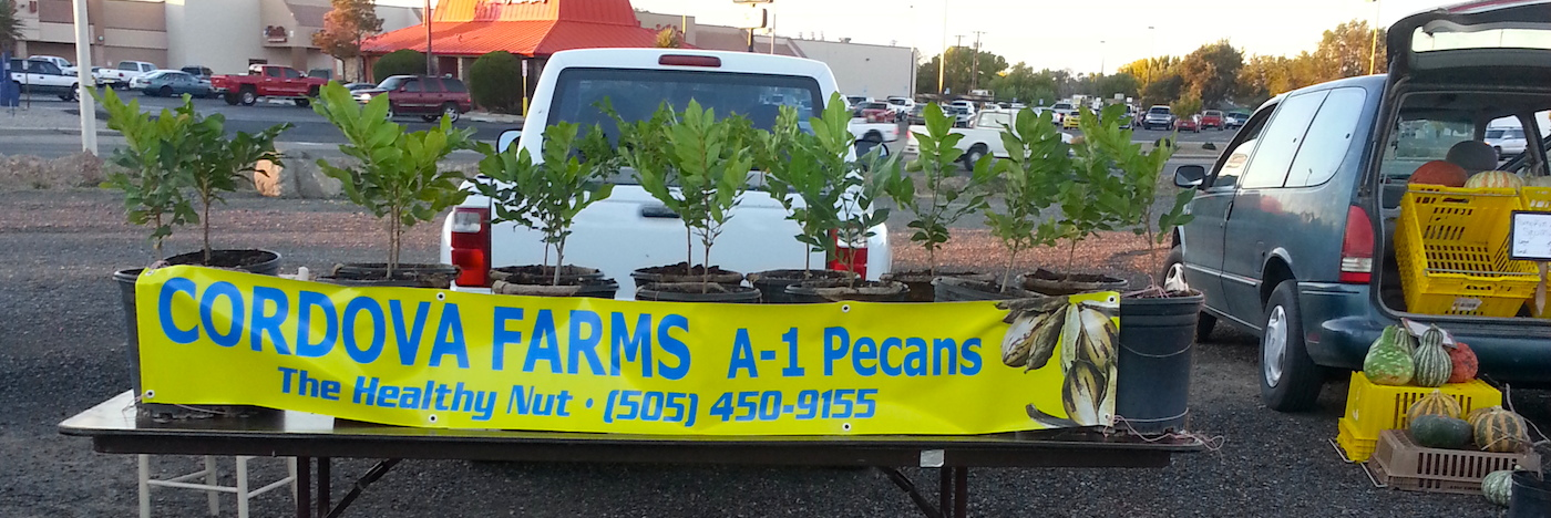 Selling Pecan Trees off the truck at the Grower's Market in Los Lunas, New Mexico.