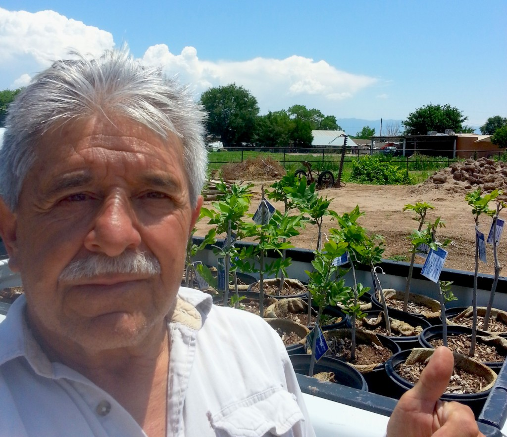 Ernest Cordova, owner of A-1 Pecans tree farm in Los Lunas New Mexico